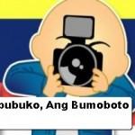 Ang Maboka, Ang Nambubuko, Ang Bumoboto: Role Perceptions in Philippine Elections