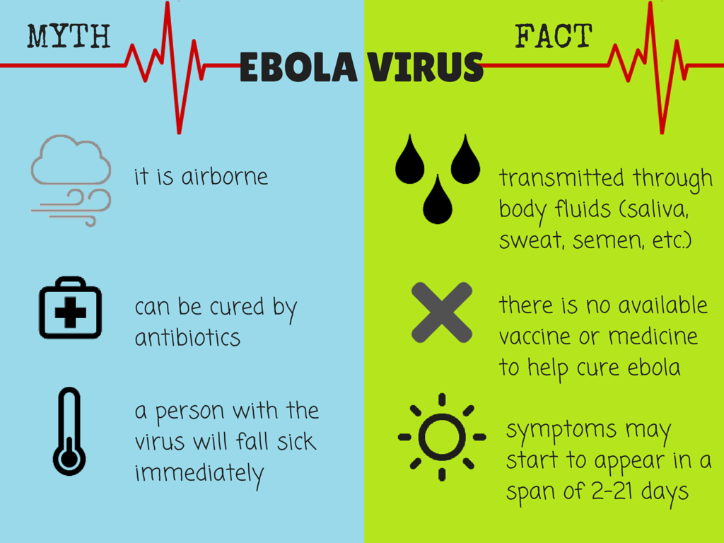 Ebola Virus Facts and Myths | Infographics by Pat Torres and Joshua Patricio